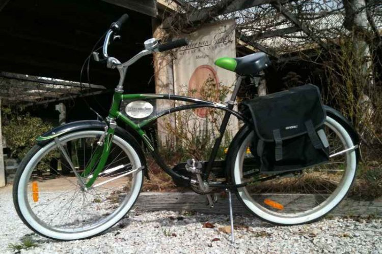 Cruiser with Saddle Bags