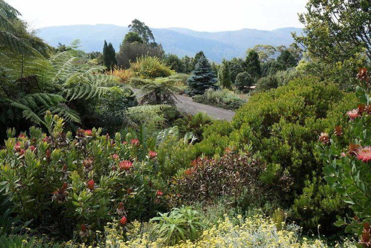 Mt. Tomah Botanical Gardens